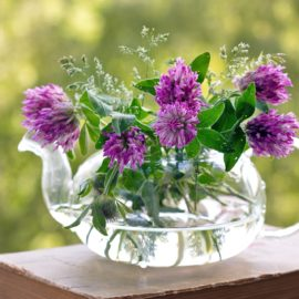 fabrication fleurs de bach
